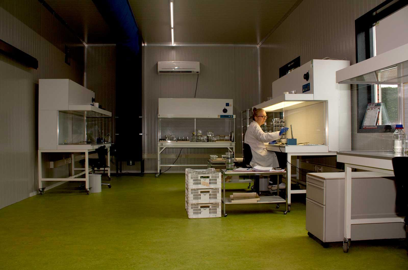 iPlant, Andijk, Laboratorium, Orchidee Specialisme